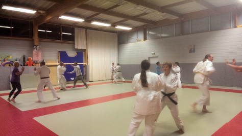 judo, ju jitsu, kendo, self defense